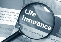 magnifying glass life insurance