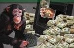 monkey and money